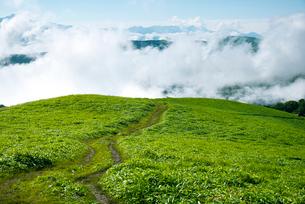 三峰山トレッキングルートと雲海に浮かぶ八ヶ岳連峰霧ヶ峰高原の写真素材 [FYI01492948]