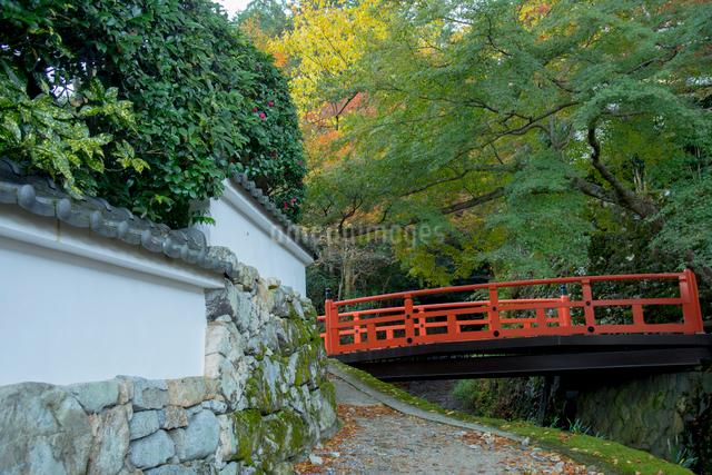 京都大原の朝未明橋の写真素材 [FYI01493094]