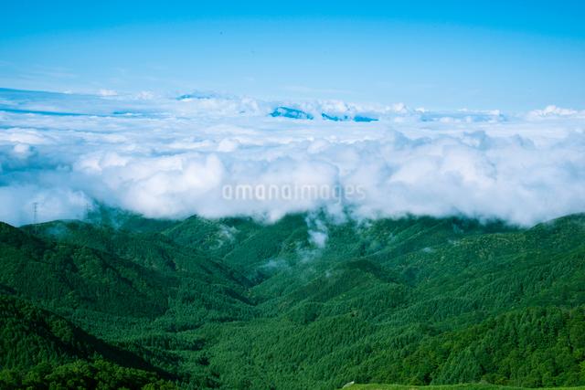 三峰山より雲海に浮かぶ中央アルプス連峰の写真素材 [FYI01493280]