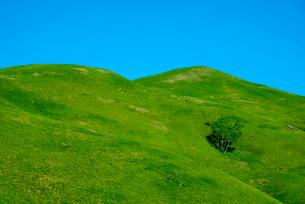 三峰山の写真素材 [FYI01493417]