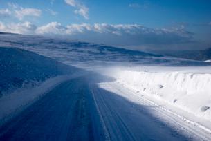 地吹雪の霧ヶ峰ビーナスラインの写真素材 [FYI01493472]