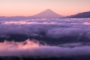 高ボッチ高原より雲海に浮かぶ夜明けの富士山の写真素材 [FYI01493591]