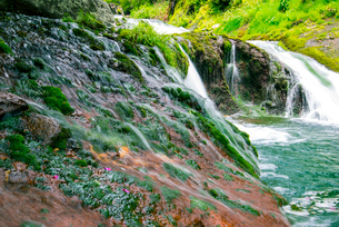 渋川渓谷おしどり隠しの滝の写真素材 [FYI01493616]