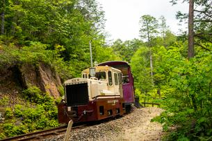 赤沢自然休養林 森林鉄道の写真素材 [FYI01493633]