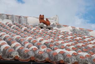 赤瓦屋根と魔除けのシーサーの写真素材 [FYI01493704]