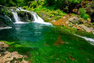 渋川渓谷おしどり隠しの滝の写真素材 [FYI01493780]