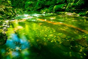 横川渓谷・新緑映す横川の清流と蛇石の写真素材 [FYI01494246]