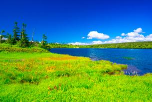 八幡平草原と八幡沼の写真素材 [FYI01494289]