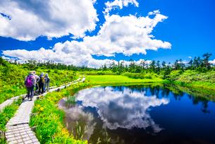 八幡平空映す地塘と草原の写真素材 [FYI01494299]