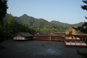 厳島神社の写真素材 [FYI01495234]