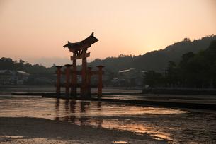 日の出の宮島と厳島神社大鳥居の写真素材 [FYI01495380]