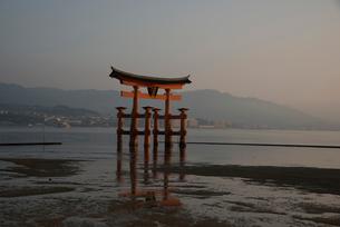 厳島神社大鳥居と広島湾廿日市市方面の写真素材 [FYI01495422]