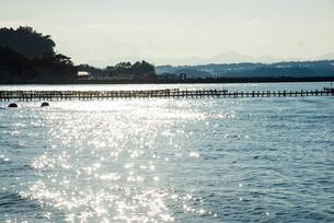 松島島巡り観光船よりカキの養殖棚の写真素材 [FYI01495540]