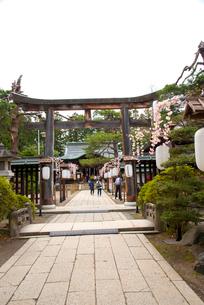 松が岬公園の上杉神社の写真素材 [FYI01495752]