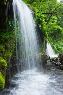 新緑の吐龍の滝の写真素材 [FYI01496353]