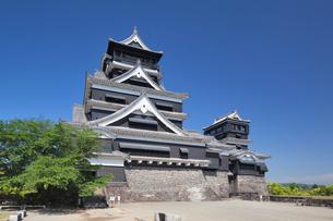 熊本城の写真素材 [FYI01496588]