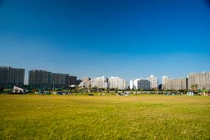 高洲海浜公園と浦安マリナイーストの写真素材 [FYI01497472]