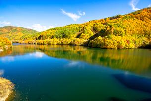 紅葉のもみじ湖 の写真素材 [FYI01497860]