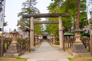 松岬神社の写真素材 [FYI01497863]