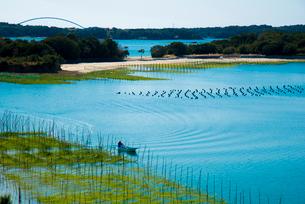桐垣展望台付近よりコバルトブルーの英虞湾を望むの写真素材 [FYI01498056]