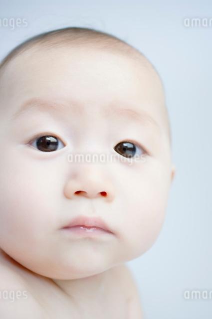 赤ちゃんアップの写真素材 [FYI01498187]