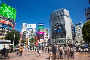 渋谷スクランブル交差点の写真素材 [FYI01498299]