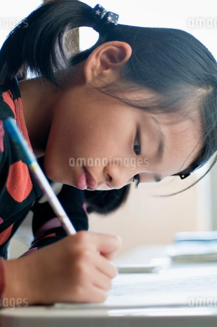 宿題をする小学生の女の子の写真素材 [FYI01498444]
