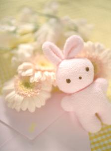 ウサギのベビー用ぬいぐるみとガーベラの写真素材 [FYI01498500]