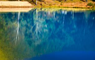 黄葉映す青い池の写真素材 [FYI01498622]