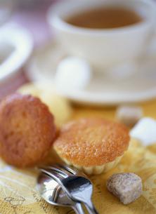 マドレーヌと紅茶の写真素材 [FYI01498669]
