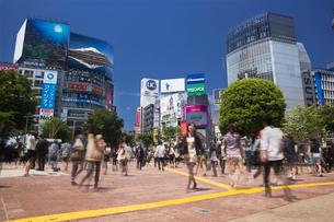 渋谷スクランブル交差点の写真素材 [FYI01498677]