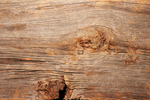 木目の写真素材 [FYI01498786]