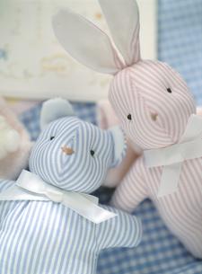 ウサギとクマのベビー用ぬいぐるみの写真素材 [FYI01498817]