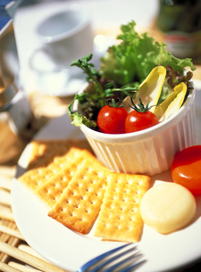 チーズとクラッカーとサラダのプレートの写真素材 [FYI01499046]