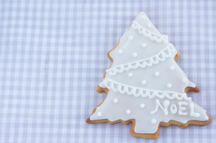 クリスマスツリーのノエルクッキーの写真素材 [FYI01499106]