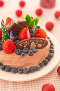 チョコレートクリスマスケーキの写真素材 [FYI01499201]