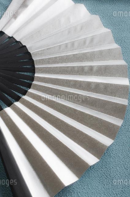 銀色の扇子の写真素材 [FYI01499409]