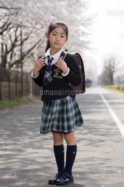 小学1年生の女の子の写真素材 [FYI01499461]