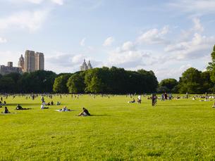 初夏のセントラルパークの写真素材 [FYI01499521]