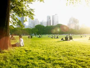 初夏のセントラルパークの写真素材 [FYI01499556]