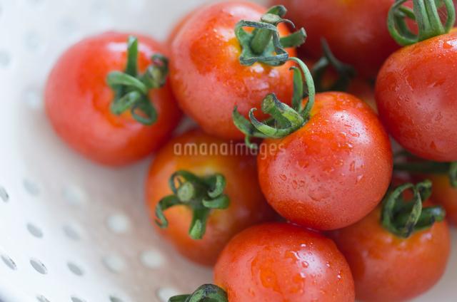 水切りボウルの中のミディアムトマトの写真素材 [FYI01499656]