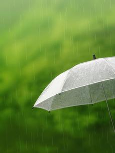 雨の中の傘の写真素材 [FYI01499872]