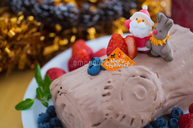 ブッシュドノエルのデコレーションクリスマスケーキの写真素材 [FYI01499898]