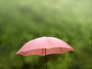 雨の中の傘の写真素材 [FYI01500072]