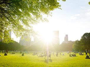 初夏のセントラルパークの写真素材 [FYI01500326]