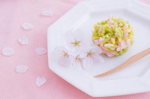 春の和菓子と桜の花の写真素材 [FYI01500409]
