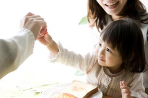 トマトを手に取る女の子の写真素材 [FYI01501074]
