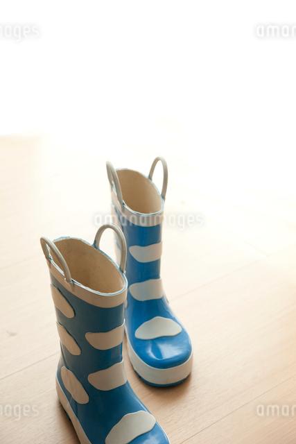 長靴の写真素材 [FYI01501100]