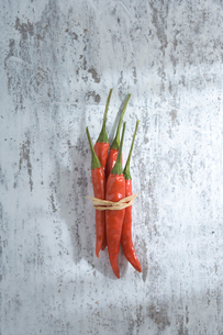 赤唐辛子の束の写真素材 [FYI01501420]