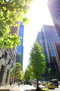 ビジネス街の写真素材 [FYI01501459]